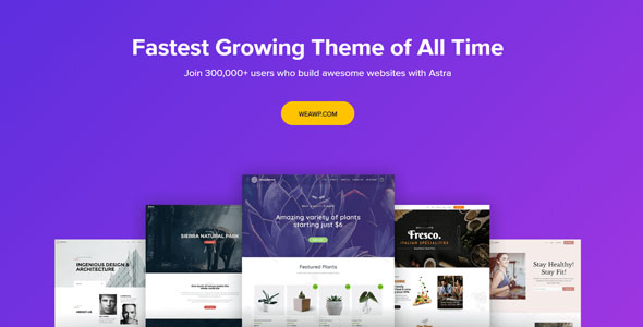 Astra Theme 3.7.3 Nulled – Customizable WordPress Theme